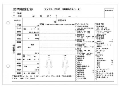 訪問看護記録サンプル(607)