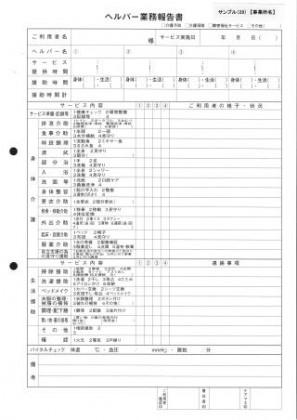 ヘルパー業務報告書/介護記録サンプル(29)