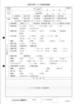 訪問介護サービス提供記録票/介護記録サンプル(35)