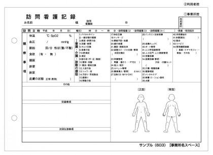 訪問看護記録サンプル(603)