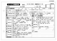 サービス実績記録/介護記録サンプル(503)