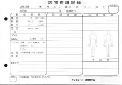訪問看護記録/介護記録サンプル(12)