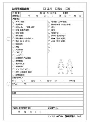 訪問看護記録サンプル(608)