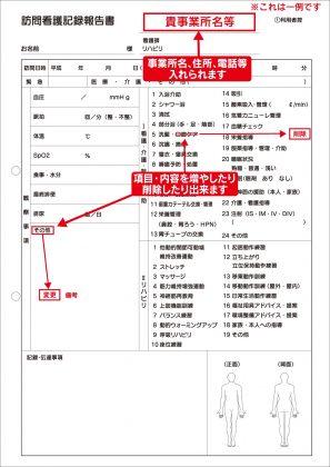 訪問看護記録報告書/看護記録サンプル(612)