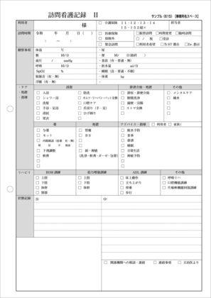 訪問看護記録Ⅱ